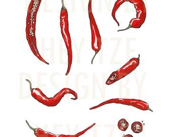 Red Chili Clip Art