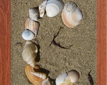 Alphabet, Shells, Printable Wall Art, SeaShell, Child, Beach, Spell, Summer,Inspirational, Motivational, Instant Digital Download,