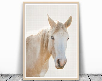 White Horse Print, Horse Photography, Animal Print, horse head, Animal Photography, Horse Art, Large Printable Art, Photo, Horse download