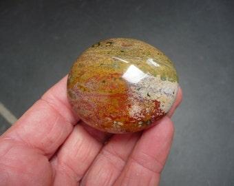 Ocean Jasper Palmstone From Madagascar