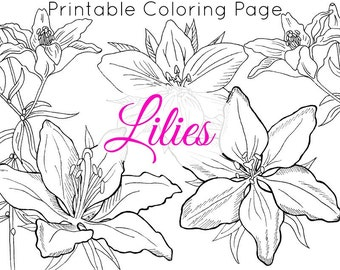 Floral Coloring Page   Coloring Page for Adults   Flower Clip Art