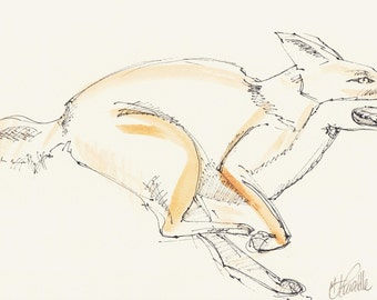 Fox on the Run, original print