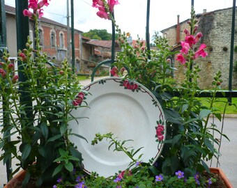 """Cakestand, with cherry design """"Quercy"""" digoin St.Amand France"""