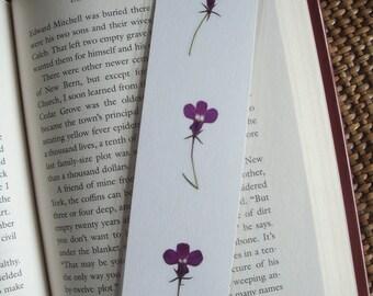 Pressed flower  bookmark - Three purple lobelia flowers, plus one flower on the back