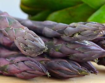 25 Pacific Purple Asparagus Crowns - Organic