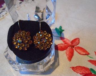 costume earrings -pierced