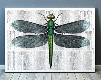 Nature poster Dragonfly print Dictionary print Insect decor RTA711B