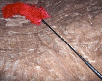 Red Ostrich Feather Body Tickler Fetish
