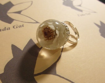 White flower of light ring.