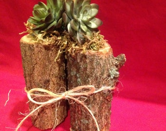 3 logs and a Succulent Artificial Plant