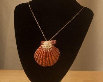 Hawaiian shell pendant