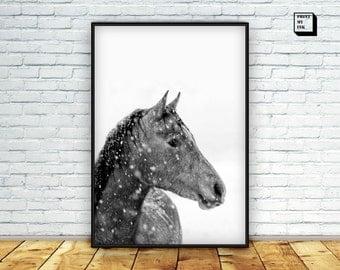 horse print, horse art, horse poster, black and white art print, black and white photography, animal print, nursery decor, horse printable