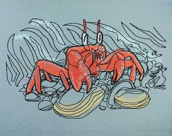 Crabb at beach