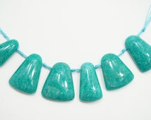 One Of A Kind Natural Brazilian Amazonite Top Drilled Trapezoid Shaped Necklace