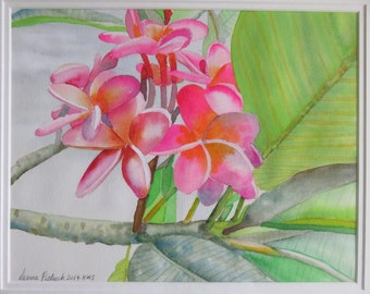 Original Watercolor Hawaiian Plumeria Tree Pink