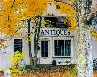 Fall Foliage, Antiques, New England, Autumn Colors, New England Travel Photo, Antique Shop, Orange Tree, Wall Decor, Antique Shop