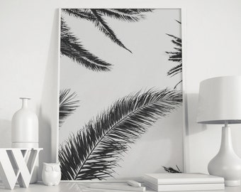 Palm tree photo, palm tree print, Palm tree, Palm leaf, Black White Photo, modern minimal, minimalist photo, Black White Palms, Beach decor