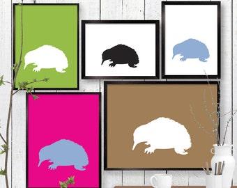 Echidna Print, Landscape, Portrait Australian Wildlife Wall Art, Animal, Room Decor, Child Baby Nursery Poster A3 A2 11x14 12x18 16x20