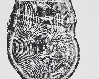 Oak Tree Ring Print