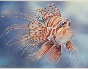Lionfish - original watercolor painting on watercolor paper