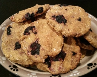 Blueberry Vanilla Treat Mix for Dogs