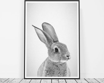 Rabbit Nursery Print, Woodland Nursery Animal, Rabbit Print, Baby Animal Photo, Baby Nursery, Forest Animals, Black and White Rabbit Photo