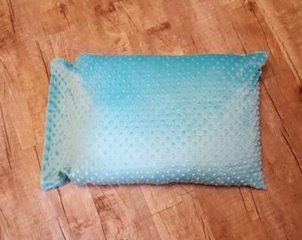 Aqua Minky Pillowcase