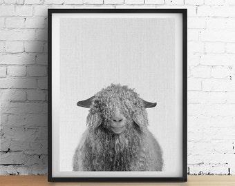 Curly SHEEP Printable Art, Animal Nursery Wall Art, Black and White Decor, Modern Minimalist Animal Print, Farm Kids Instant Download