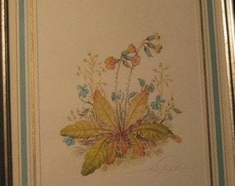 Vittorio Guidotti Original Botanical Watercolor