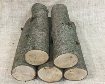 Maple firewood logs