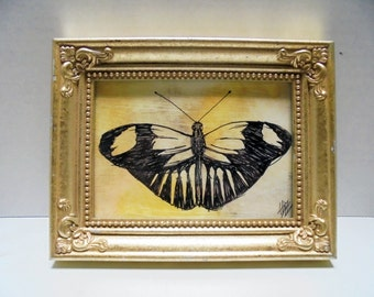 Framed butterfly sketch