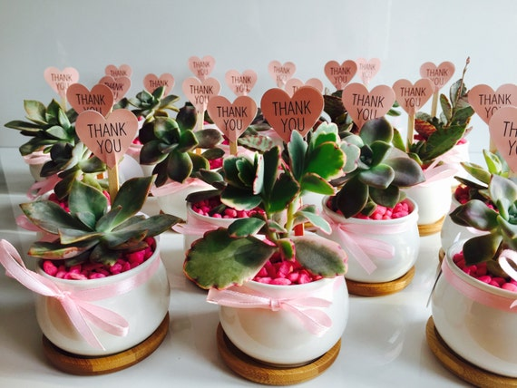 Medium Round Ceramic Pot Baby Shower / Christening Favours
