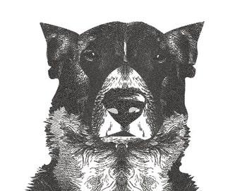 Custom animal design