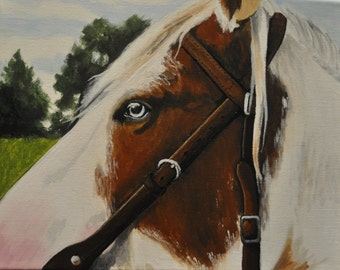 "Horse Painting- ""Rocky"""