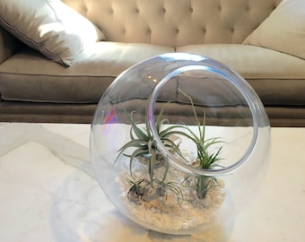 XL air plant terrarium globe | air plant planter pot | beach modern decor