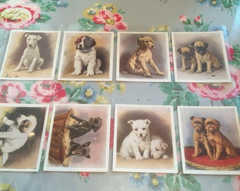 "Vintage 1936 full set of 30 ""our puppies "" cards by godfrey phillips"