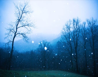 Snow Print, Fine Art Photography, First Snow, Blue Ridge Mountains