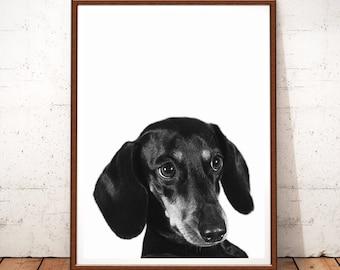 Dog Dachshund Print, Dog Print, Dachshund Photography, Instant Download, Dog Printable Art, Animal Wall Art, Black and White, Dachshund Art