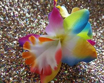 Small, rainbow, multicoloured, double flower hair clip