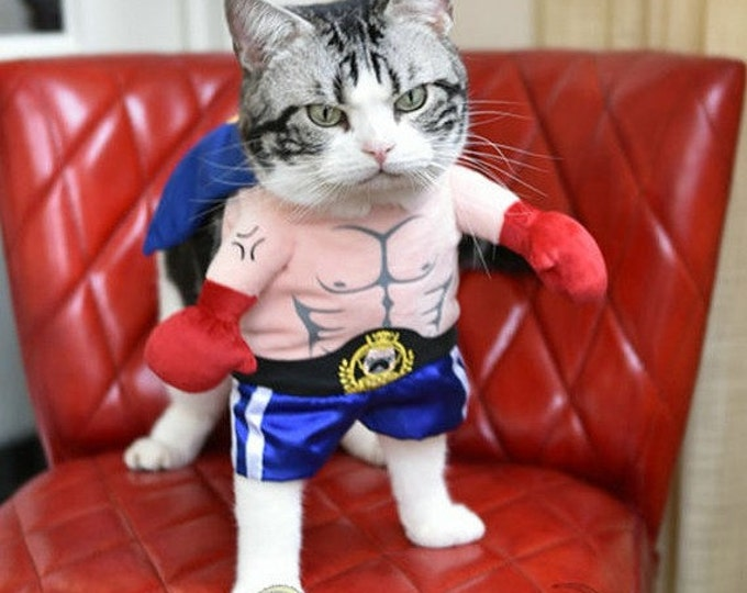 SALE!!! 25% Pet Clothing. Cat clothes, dog clothes. Funny clothing for the cat, Funny clothing for the dog. Costume Boxer.