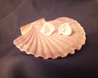 Sea Shell Earring Studs