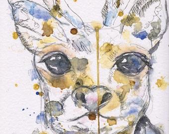 Gia the Deer