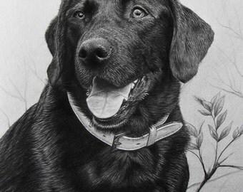 dog sketch3