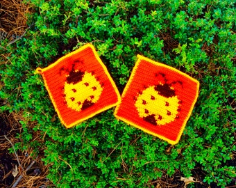 Ladybugs in fall pot holder