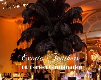 "100 pcs Black Ostrich Feathers 13-16"",wedding table centerpiece,decoration,ostrich centerpiece,ostrich feather centerpiece. Exotic Feathers"