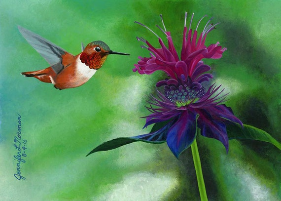 Hummingbird art wall decor hummingbird art prints for Hummingbird decor