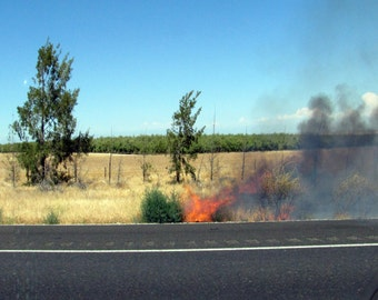 Fire, CA - PRINT