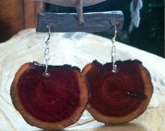 Cedar wood earwires earrings natural Earrings