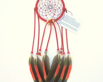 Red Dream Catcher, Amazon Parrot Feathers