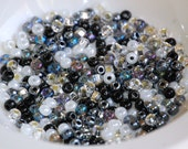 SIZE 6 BLACK and WHITE Mix Glass Seed Beads (24 grams) Destash SEED217